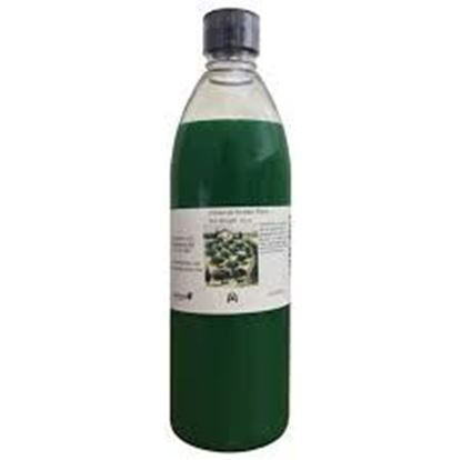 Picture of V.D. CREME D'MENTHE 1 GAL