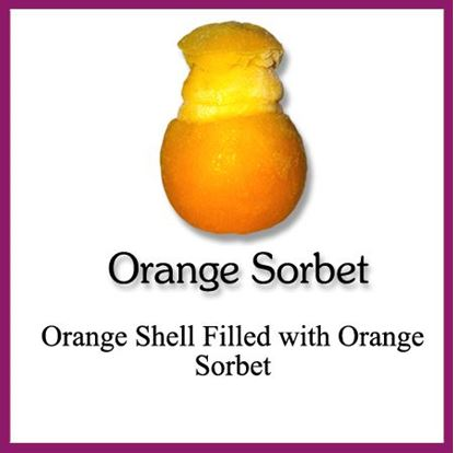 Picture of SORBET SHELL ORANGE